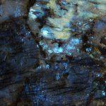 Labradorite Blue Madagascar